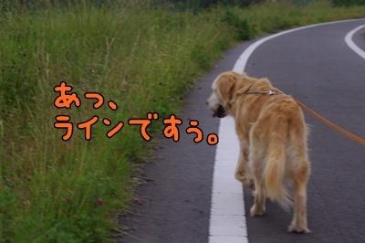 1.ライン・ガール11.jpg