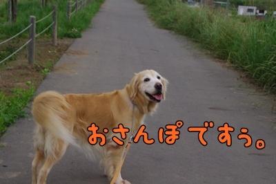 1.ライン・ガール12.jpg