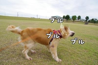 1.涼しい日03.jpg