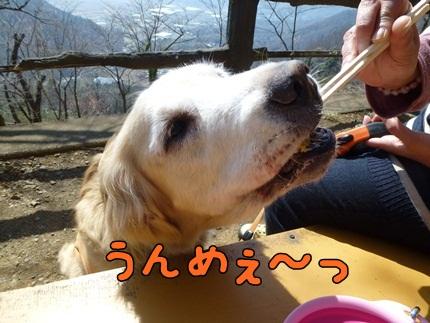 1,大平山04.JPG