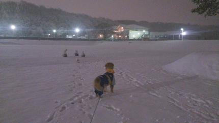 1,H26大雪03.jpg