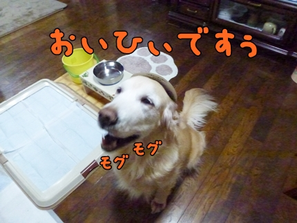 1,H26年鬼04.JPG