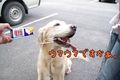 1.モナ王09.jpg