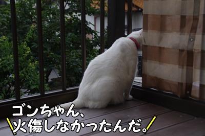 1.花火大会13.jpg
