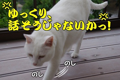 1.花火大会17.jpg