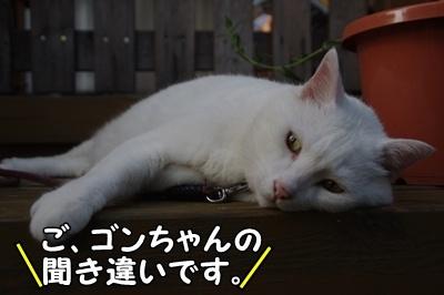 1.スヌーピー06.jpg