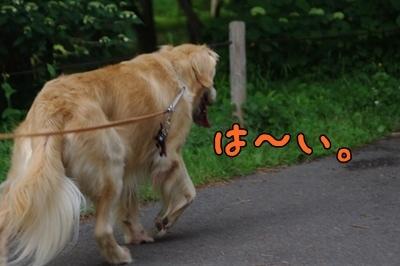 1.モナ王03.jpg