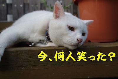 1.スヌーピー09.jpg
